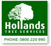hollands tree services christchurch